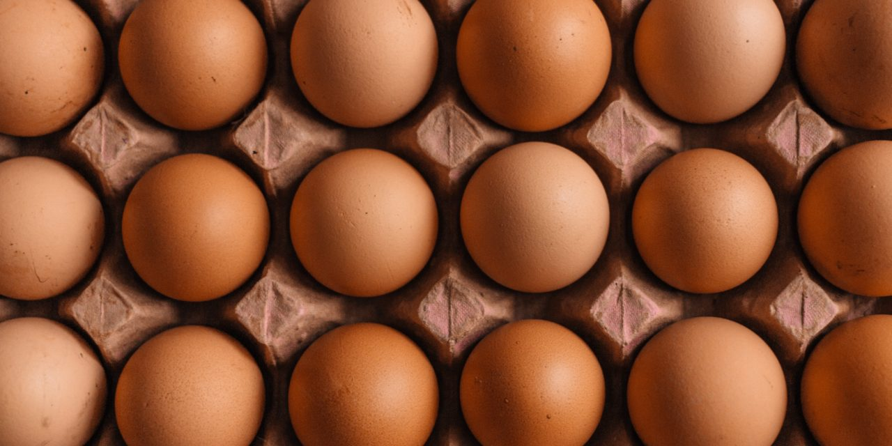 No yolk! A photo of an egg has become the most-liked post on Instagram